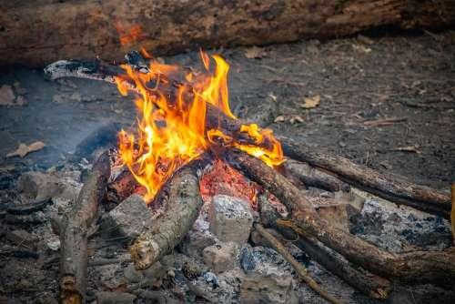 Bonfire Fire Firewood Coals Stones Picnic Koster