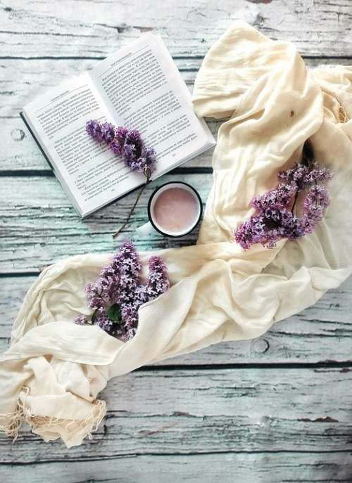 Book Lilac Flowers Cocoa Drink Reading Hobby