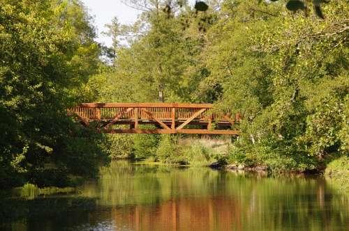 Bridge Architecture Landscape Water River