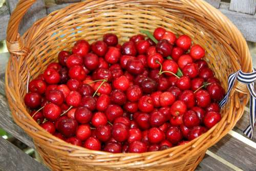 Cherries Basket Fruit Garden Nature Harvest