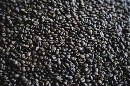 Coffee Light Shadow Brown Beans Caffeine Cafe