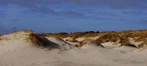 Dunes Amrum Island Nordsee Sand Sea Coast Nature