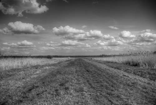 Field Sky Clouds Grass Meadow Panorama Monochrome