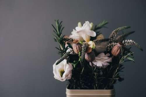 Flowers Arrangement Decor Decoration Floral