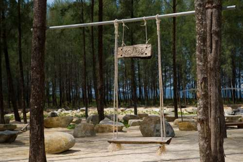 Forest Nature Tree Green Swing