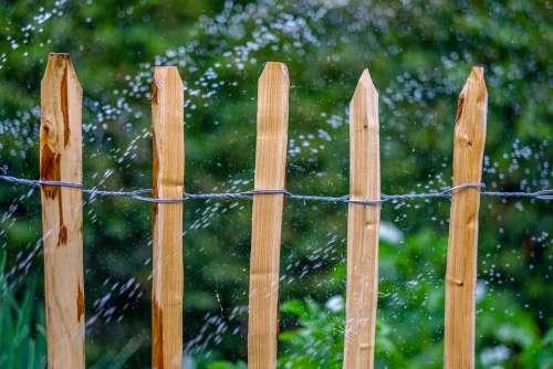 Garden Hose Water Irrigation Summer Nature Wet