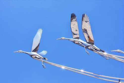 Geese Sculpture Sky Korea Park Landscape Model