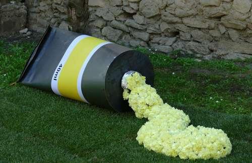 Girona Spain City Flowers Flower Festival