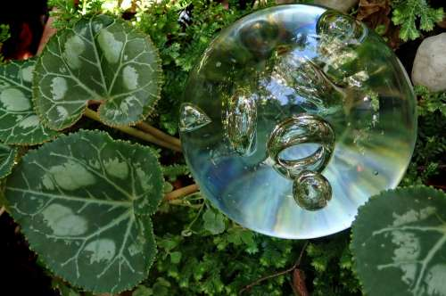 Glass Bubble Paper Weight Leaves Transparent Garden