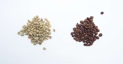 Green Beans Vs Roasted Beans Green Vs Roasted Beans
