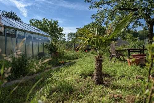 Greenhouse Garden Idyllic Palm Vegetable Garden