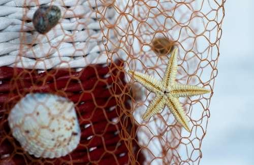Handmade Seashells Network Seafood Starfish Net