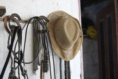 Hat Horse Stable Cowboy