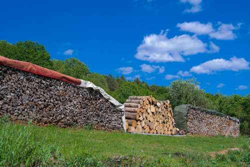 Holzstapel Timber Camp Wood Firewood Growing Stock