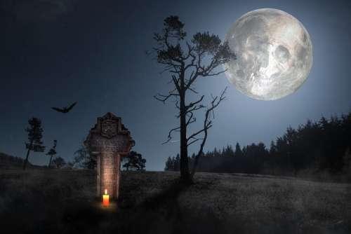 Horror Skull And Crossbones Weird Skull Death