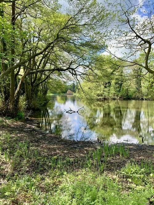 Lake Trees Water Nature Landscape Reflection