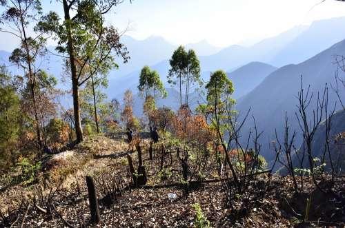 Landscape Mountain Kodaikanal Mountains Nature