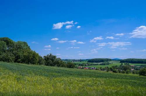 Landscape Fields Cereals Panorama Nature