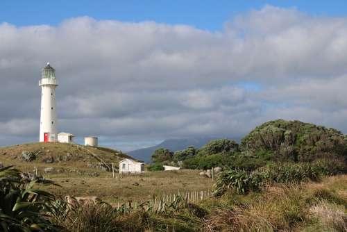 Lighthouse Farm Hill Trees Taranaki New Zealand