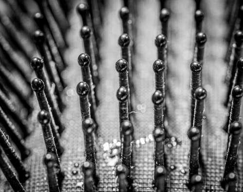 Macro Brush Close Up Monochrome Black And White