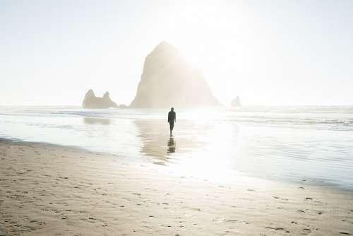 Man Male People Walk Beach Shore Sand Nature