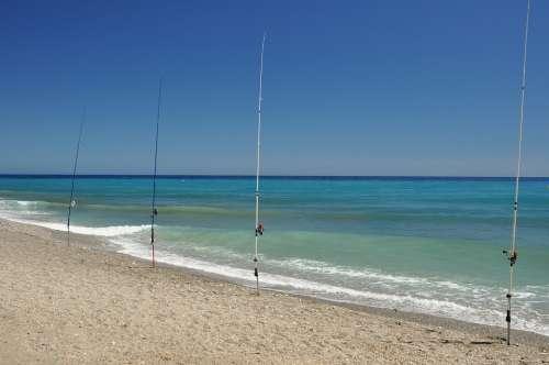Mediterranean Fish Sea Fishing Beach Coast