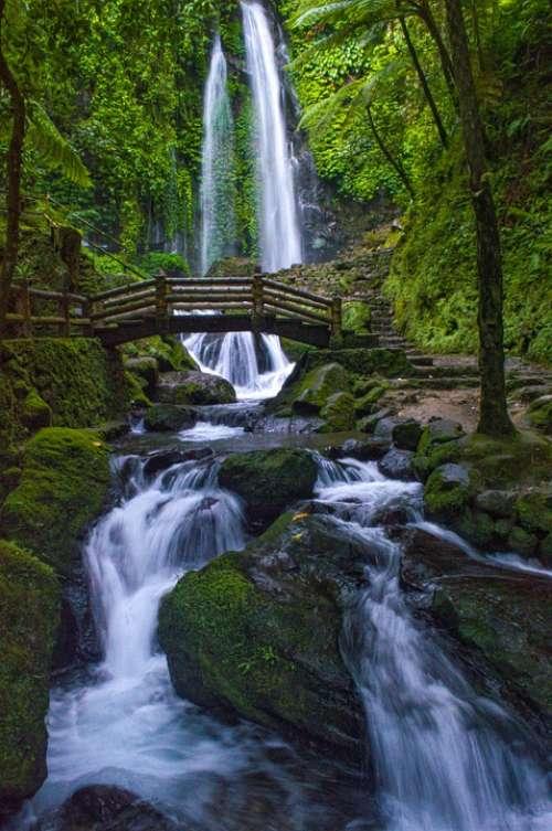 Nature Landscape Waterfall Green Water