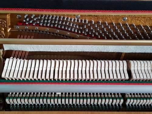 Piano Mechanics Instrument Music Hammer Strings