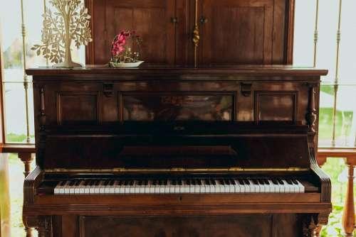 Piano Wedding Romantic Marriage Marry