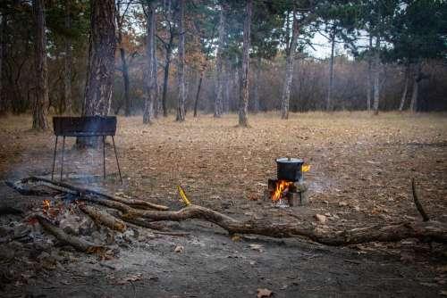 Picnic Bonfire Shish Kebab Mangal Food Vacation