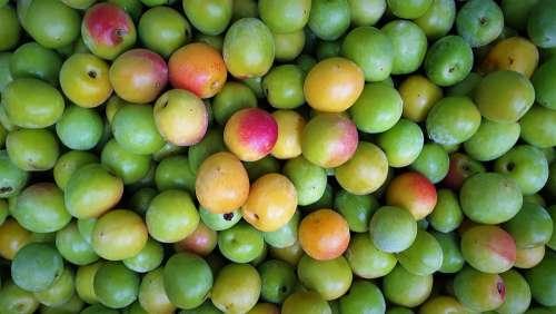 Plum Fruit Health Nature