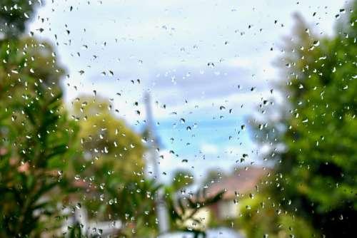 Rain Raindrops Wet Water Nature Raindrop Drip