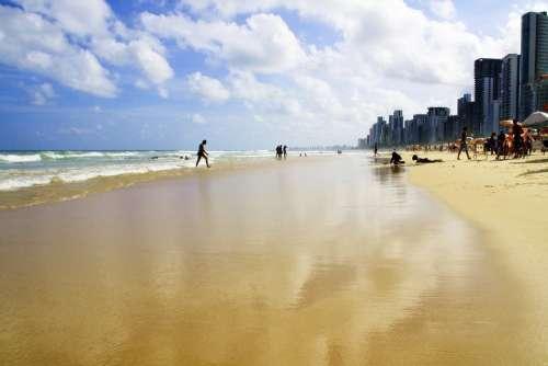 Recife Beach Praia Nature