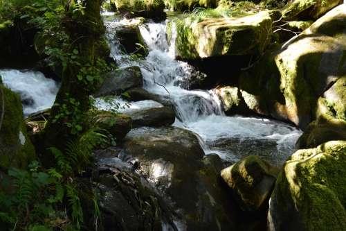 River Waterfall Nature Landscape Brook Stone