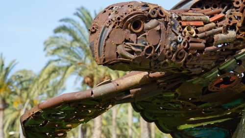 Sculpture Art Turtle Recycling Rusty Palm Trees