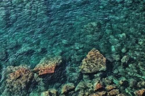 Sea Transparency Transparent Underwater Translucent