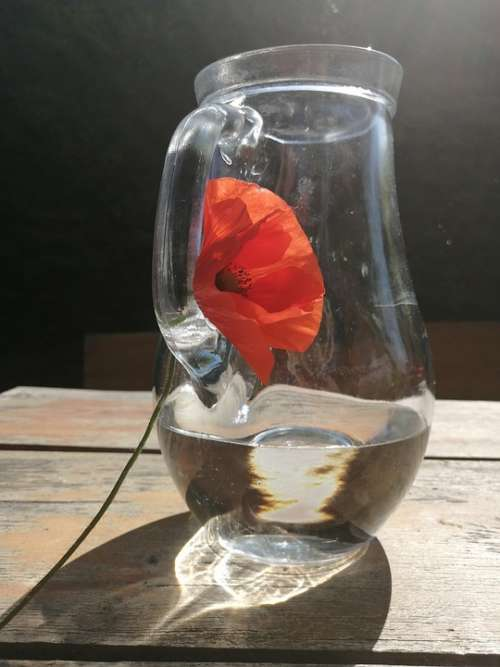Sklenené Water Glass Pitcher Morning Flower