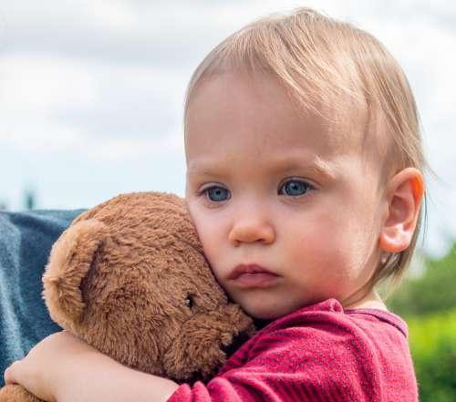 Small Child Bear Teddy Child Toys Cute