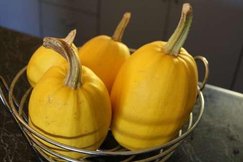 Spaghetti Squash Homegrown Vegetables Pumpkins