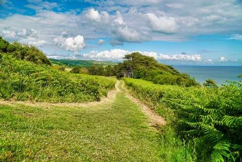 Spring Coast Coastal Coastal Path Path Grass