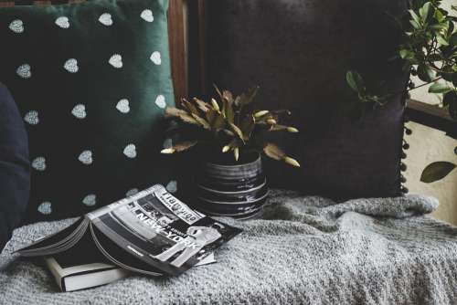 Stilllife Cozy Cushion Plant Books