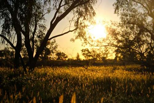 Sunrise Outback Queensland Australia Landscape Sun