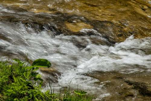 Szalajka Valley Stream Water Nature Flow Outdoor