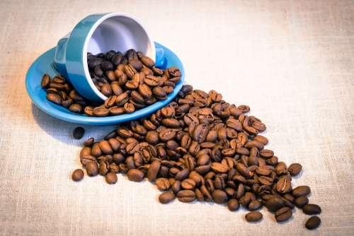 Teacup Grains Coffee