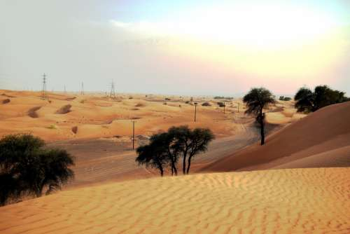 U A E Desert Sand Vacations Travel Tourism