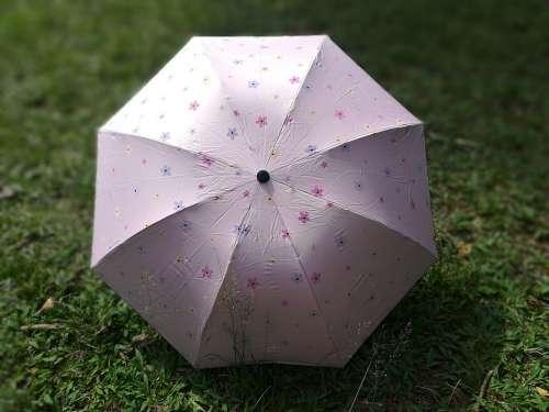 Umbrella Pink Rosa Climate Rain Sunshade Meadow