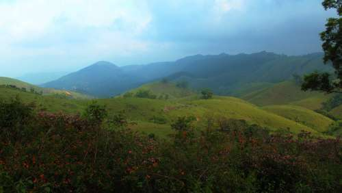 Vagamon Kerala India Meadows Meadow Nature