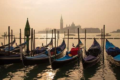 Venice Gondolas Sunrise Water Boat Italy