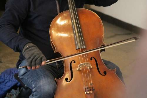 Violin Musician Music Instrument Orchestra Play