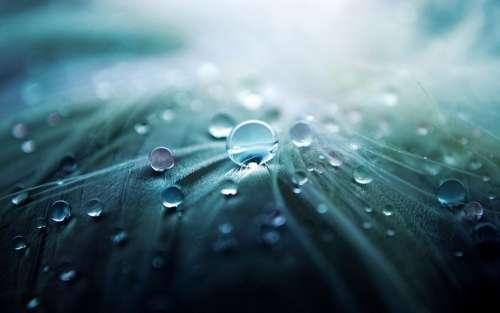 Water Drop Drop Of Water Character Rain Blue
